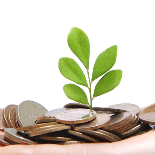 Seminee electrice - economiseste bani